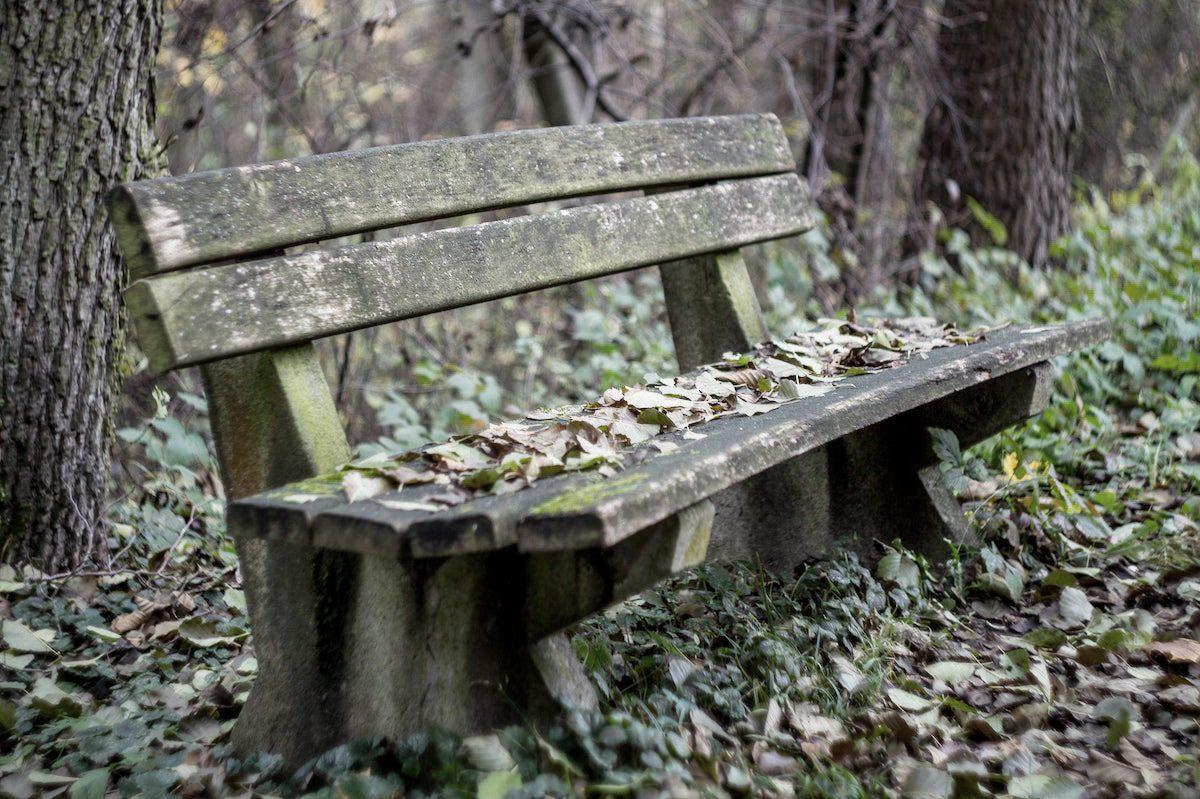 Sitzbank mit Laub im Herbst
